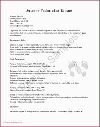 Example Resume For Students Example Resumes For College Students Job