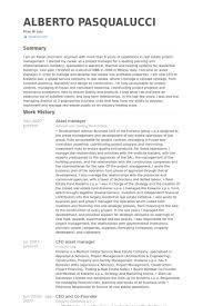Asset Manager Resume samples