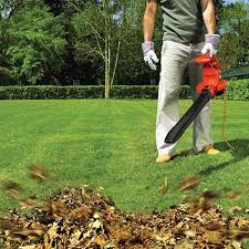 hitachi gas leaf blower. combining good power with handling convenience hitachi 2 stroke 170 mph gas powered handheld blower help save time, rebate and best price leaf