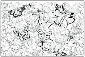 Free Printable Coloring Pages Of Pets Animals Colouring In Print Out