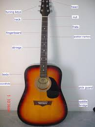 History of the Acoustic Guitar and Electric Guitar