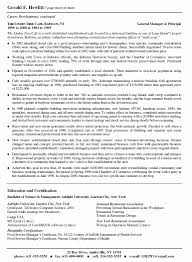 2 Pages Resume Format It Resume Cover Letter Sample