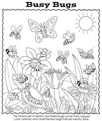 Bug Activity Sheets Bug Coloring Page Coloring Pages Nature Coloring