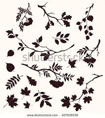 tree branch with leaves vector. autumn set of twig and leaf silhouettes. decorative tree branches. oak, maple, branch with leaves vector