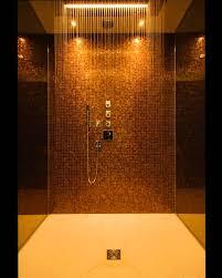 Brilliant Bathroom Rain Shower Ideas Photo E Throughout Decor
