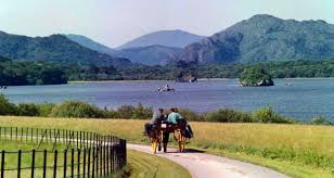 Jaunting Car Ride in Killarney National Park