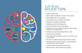characteristics of left brain dominant students