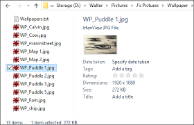 How to Customize Folder View Settings in Windows