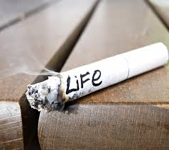cause and effect essay of smoking cause and effect essay on smoking essay clip