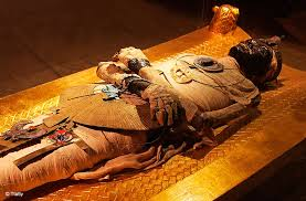 the death or murder of king tut com the death or murder of king tut