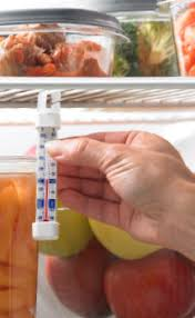 Refrigerator Thermometers Cold Facts About Food Safety Fda