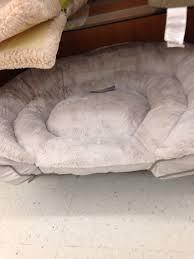 tj maxx dog beds. Exellent Maxx Dog Bed Tjmaxx For Tj Maxx Beds O