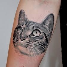 Kočičí Tetování Zábava Modrý Kocouřcz