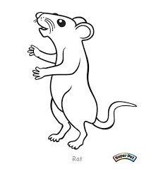 Small Picture Coloring Book Small Rats Coloring Coloring Pages