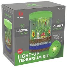 Six-year-old boys are ready to explore the world in more detailed ways and Light-up Terrarium Kit for Kids will help them understand about way A Guide On The Best Gifts \u0026 Toys For 6 Year Old Boys - New 2019