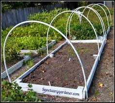 pvc hoops on raised beds