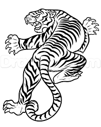 Tiger Step By Step Drawing Free Download Best Tiger Step By Step