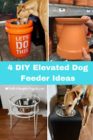 get 4 ideas on how to make an elevated dog feeder for your