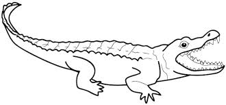 Crocodile Coloring Pages Crocodile Coloring Pages To Print Alligator