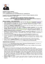 Auditor Resumes Nmdnconference Com Example Resume And Cover Letter