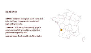 What Is Bordeaux Learn About The Grapes Wine Region