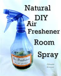quick easy and non toxic diy air freshener room spray
