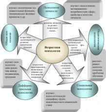 Консультирование психологическое обратная связь это что такое  Связь возрастной психологии с отраслями психологической науки