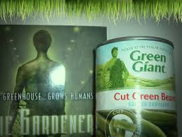 author s a bodeen publisher square fish length 232 pages this cover was totally twinning with the jolly green giant