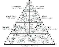 food web pyramid food pyramid coloring sheet pyramid coloring pages food web coloring