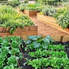 best wood for raised garden beds