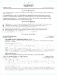 Resume Summary Statement Unique 60 Beautiful Resume Summary Statement Examples Photographs