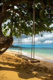 Tree Swings Giant Swing North Shore Oahu Aloha Hawaii Pinterest North