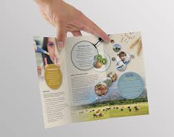 loudhailer design our work food safety science and food safety science and research centre brochure image 2