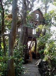 The Lake District Treehouse Built And Designed By Blue Forest Treehouse Lake District