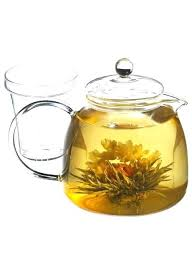 tea kettle for glass top stove glass stove top water and tea kettle with included tea tea kettle for glass top stove