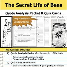 Secret Life Of Bees Quotes Extraordinary The Secret Life Of Bees Quote Analysis Reading Quizzes By S J Brull