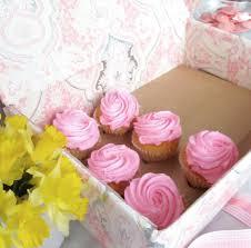 36 Cupcake Carrier Mesmerizing Cupcake Carrier Cupcake Courier 60 And 60 Cupcake Carrier For