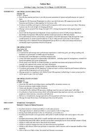 Hr Operations Resume Samples Velvet Jobs