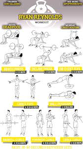 Exercise Chart For Men 15 Memorable Gym Exercise Chart For Biceps Pdf