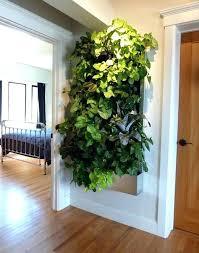 herb wall planter indoor indoor wall gardens best indoor vertical gardens ideas on outdoor wall planters herb wall