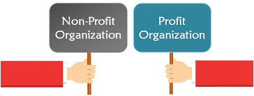Non Profit Comparison Chart Difference Between Profit And Non Profit Organisation With