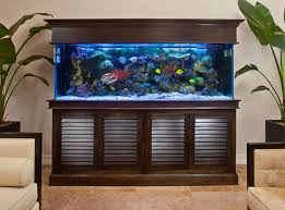 Transform The Way Your Home Looks Using A Fish Tank  Room Decor Fish Tank Room Design