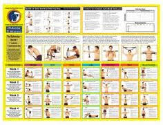 Iso7x Workout Chart Pdf 46 Best Bullworker Images In 2019 Isometric Exercises