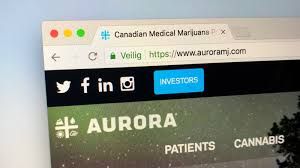 Aurora Stock Chart Does Aurora Cannabis Stock Chart Point To A Mid Summer