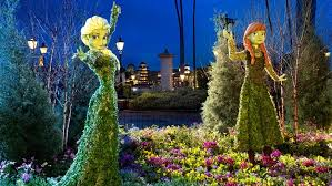epcot international flower garden festival now blooming