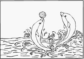 Small Picture Free Dolphin Coloring Pages Mermaid And Dolphins Coloring Page