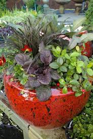 5 Fall Container Gardening Ideas That Celebrate AutumnContainer Garden Ideas For Winter