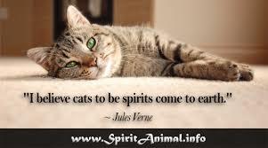 Cat Quotes Unique Cat Quotes