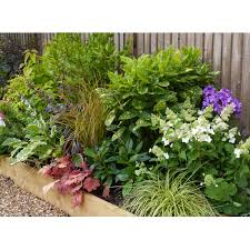 Small Picture Garden Border Design Templates Container Gardening Ideas