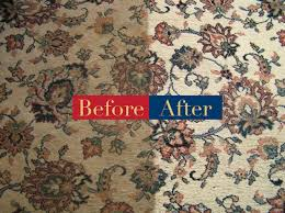 oriental and wool rug cleaning naples florida
